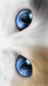-cat-smartphone-wallpaper-cats-eye-kitten-blue-real-スマホ用壁紙CATSEYEキトンブルー