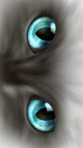 -cat-smartphone-wallpaper-cats-eye-blue-real-スマホ用壁紙CATSEYEブルー