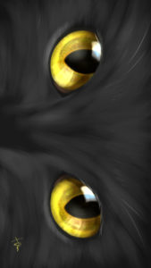 -cat-smartphone-wallpaper-cats-eye-gold-real-スマホ用壁紙CATSEYEゴールド