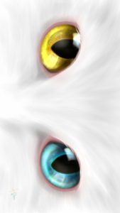-cat-smartphone-wallpaper-cats-eye-odd-eye-real-スマホ用壁紙CATSEYEオッドアイ