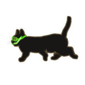 夏猫ブラックシュノーケル