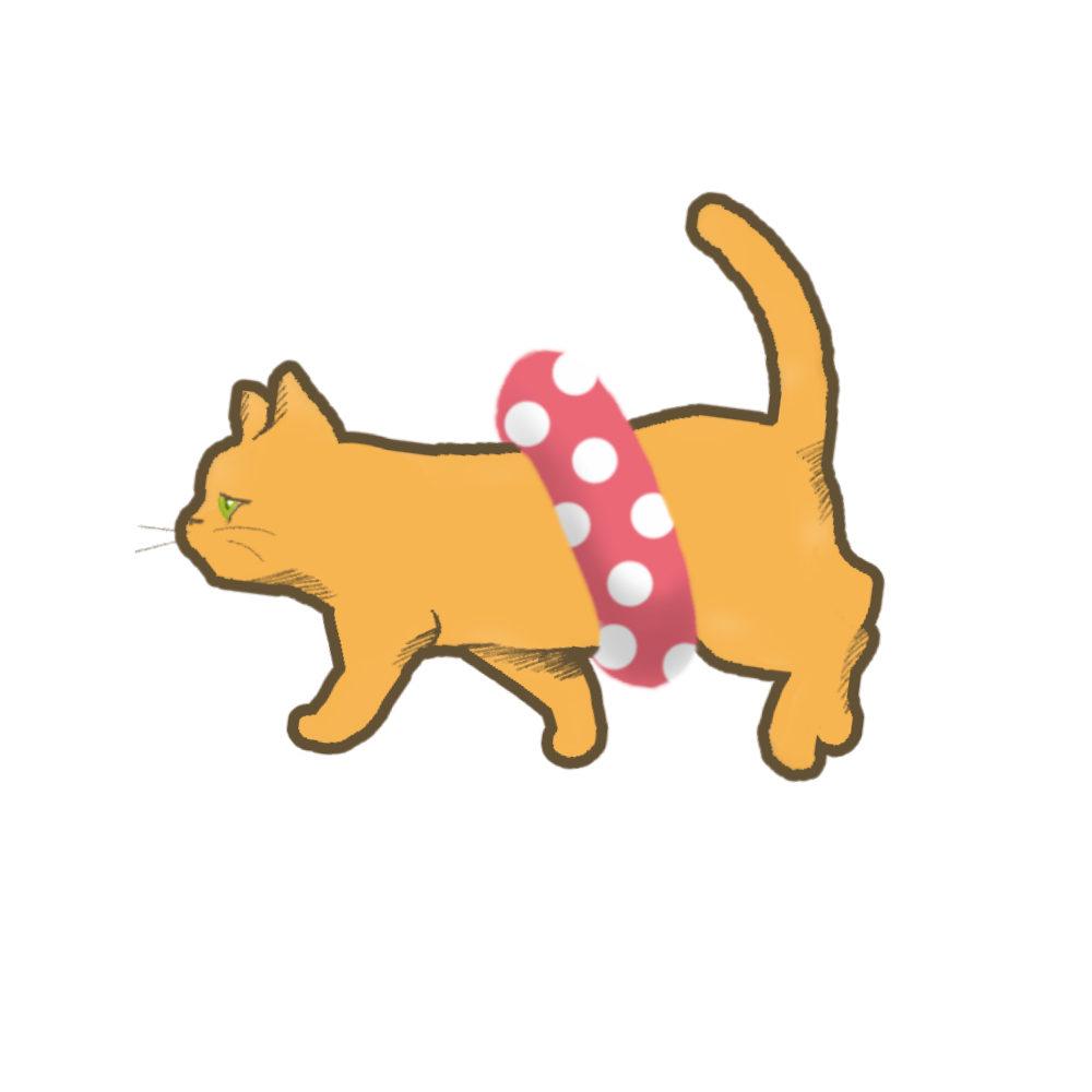 夏猫オレンジ浮き輪