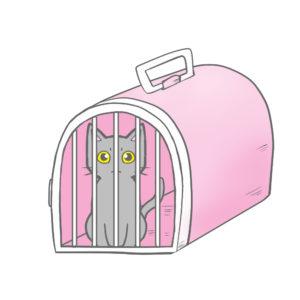 猫イラストシチュエーションペットキャリーに入った猫ピンク