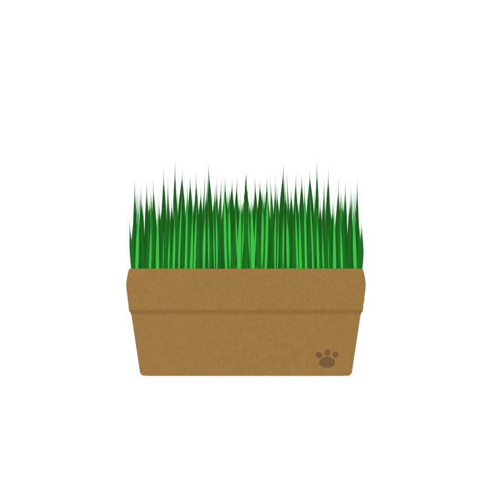 猫イラストアイテム猫草