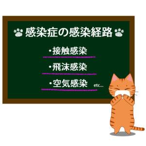 猫イラストシチュエーション茶トラ猫が教える感染症の感染経路