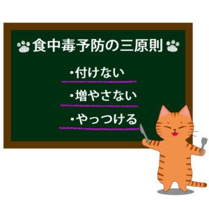 猫イラストシチュエーション茶トラ猫が教える食中毒予防の三原則