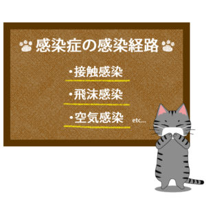猫イラストシチュエーションサバトラ猫が教える感染症の感染経路
