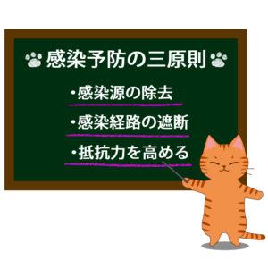 猫イラストシチュエーション茶トラ猫が教える感染予防の三原則