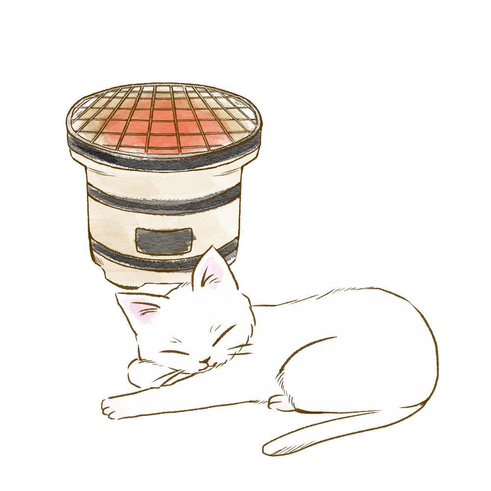 しちりんで暖をとる白猫