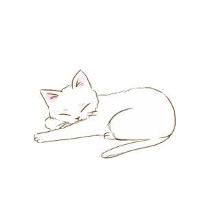 寝そべる白猫