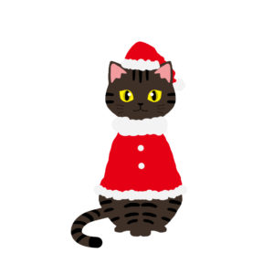 クリスマス赤いサンタ服を着た猫キジトラ