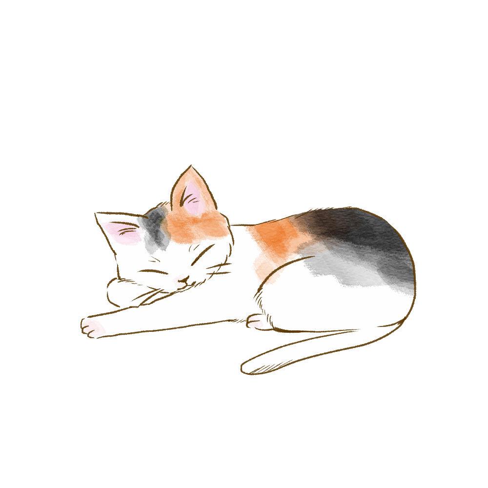 寝そべる三毛猫
