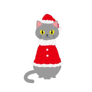 クリスマス赤いサンタ服を着た猫グレー