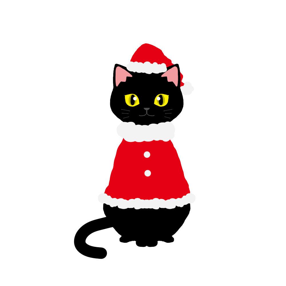 クリスマス赤いサンタ服を着た猫黒