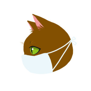 マスクをつけた猫ブラウン横顔