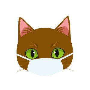マスクをつけた猫ブラウン正面