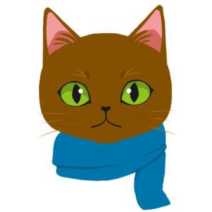 マフラーを巻いた猫ブラウン×ブルー正面