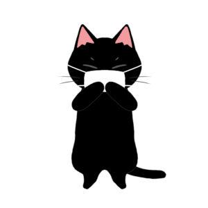 マスクを着けた猫黒猫
