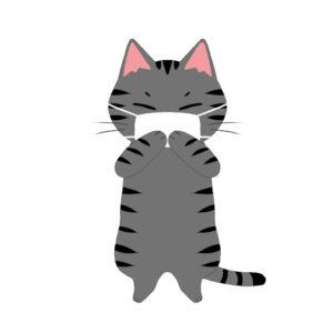 マスクを着けた猫サバトラ