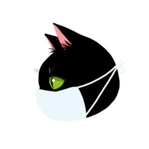 マスクをつけた猫ブラック横顔
