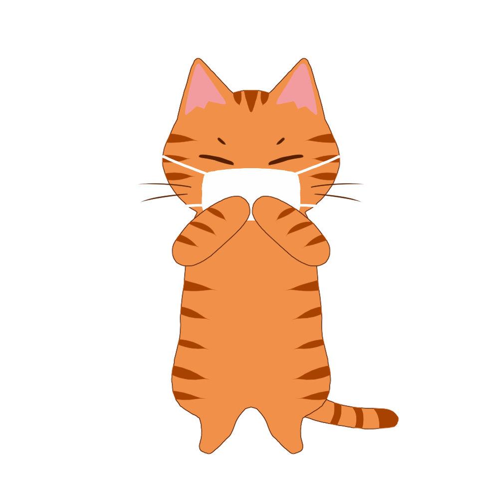 マスクを着けた猫茶トラ