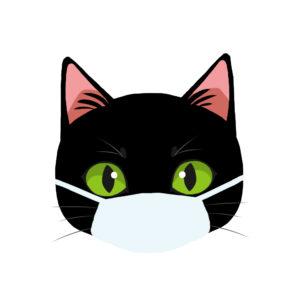 マスクをつけた猫ブラック正面