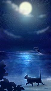 スマホ用壁紙夜空と海と猫