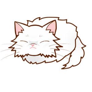 まんじゅう猫全身Bペルシャホワイトソリッド