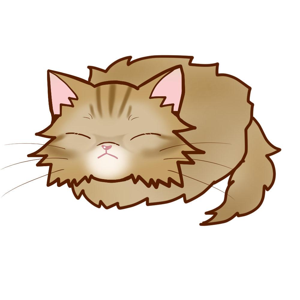 まんじゅう猫全身Bペルシャチンチラゴールデン