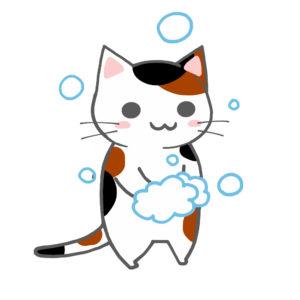 手を洗う猫(全身)三毛