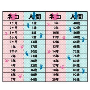 猫の年齢表ピンク×ブルー