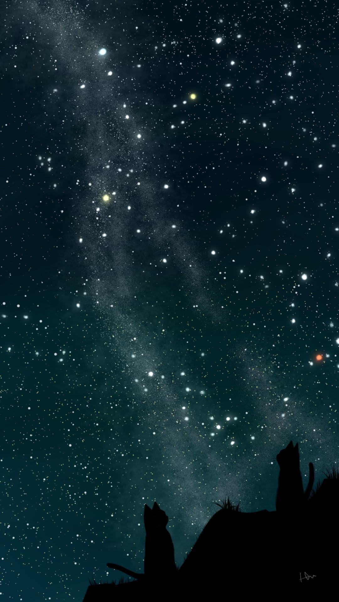 スマホ用壁紙夏の星座が輝く夜空と猫