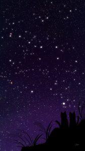 スマホ用壁紙秋の星座が輝く夜空と猫