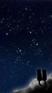 スマホ用壁紙冬の星座が輝く夜空と猫