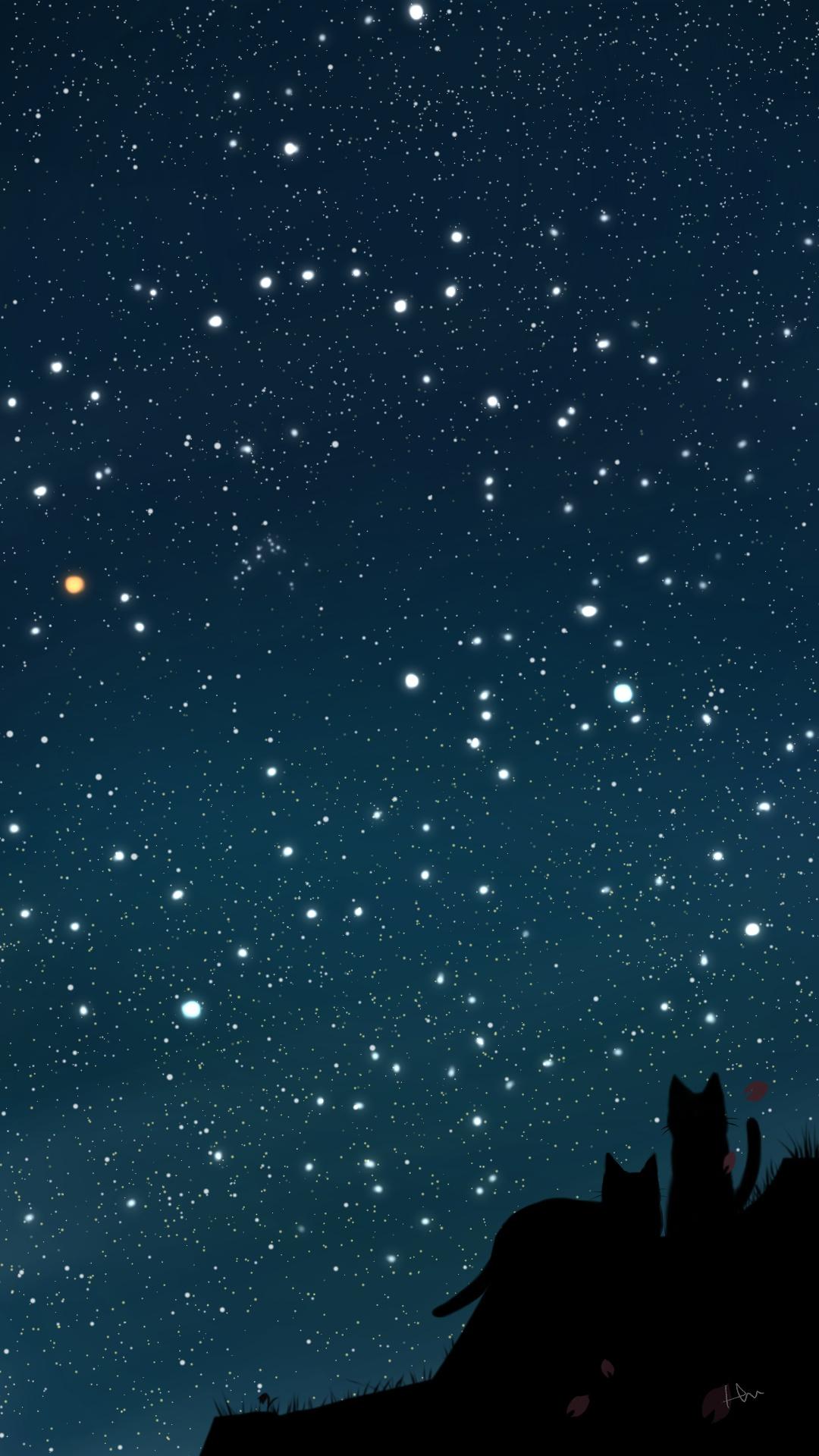 スマホ用壁紙春の星座が輝く夜空と猫