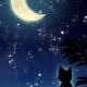 【スマホ用壁紙】三日月と猫