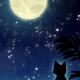 【スマホ用壁紙】満月と猫