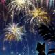 【スマホ用壁紙】花火と猫